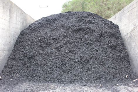 blackwood-mulch1